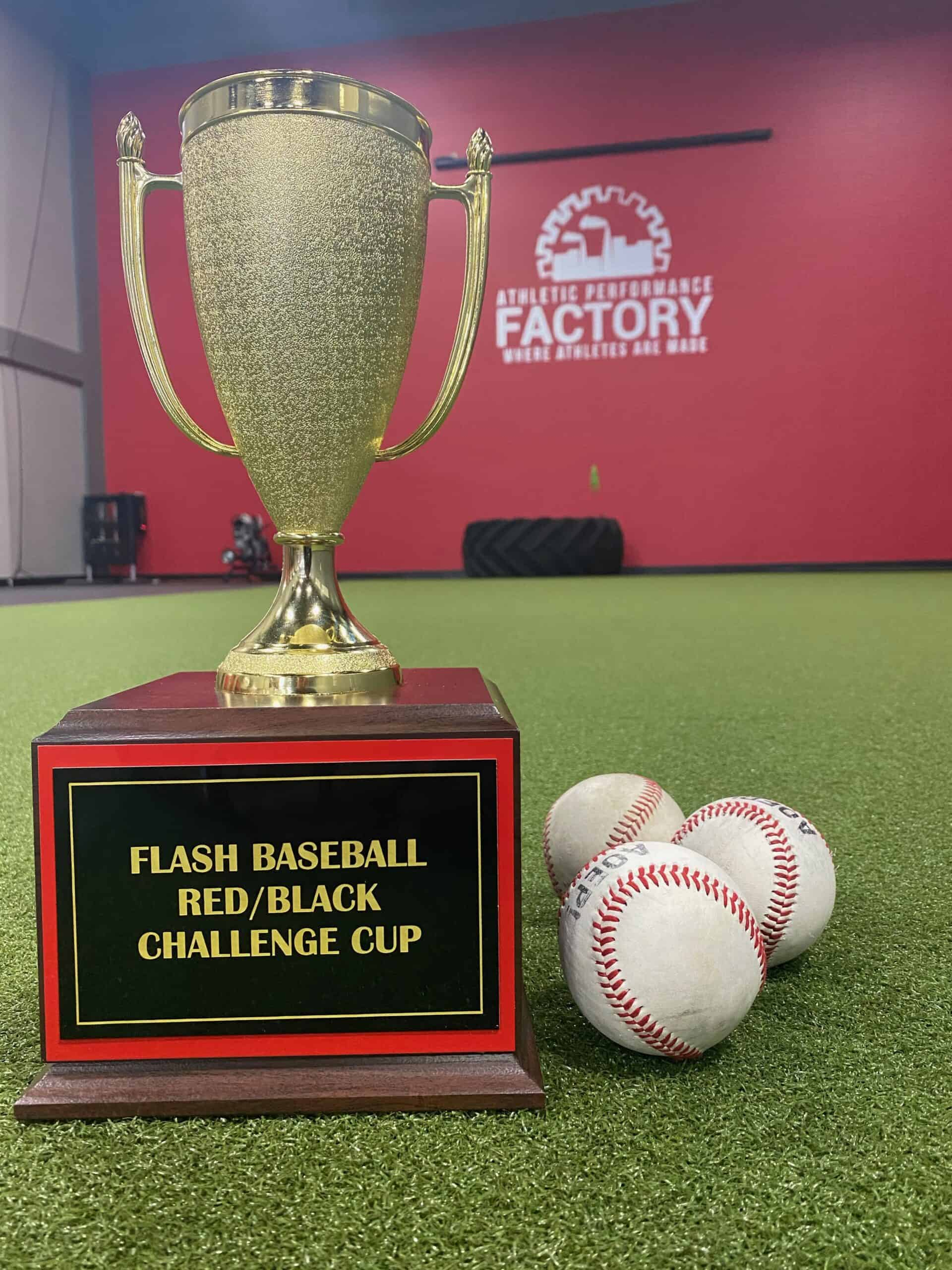 Gold cup Flash baseball Red/Black Challenge cup trophy next to baseballs